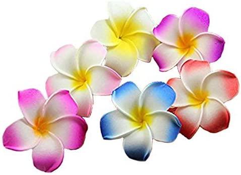 Calcifer 5 Nippon regular agency ☆ popular 30pcs 1.97''Hawaii Hawaiian Flower Plumeria Brida Clips