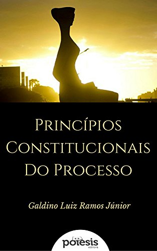 Princípios Constitucionais do Processo: Visão Crítica (Segredos Jurídicos Livro 4)