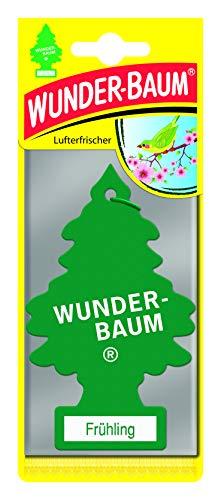 Wunderbaum 134215/24 Frühling 1er Karte, green