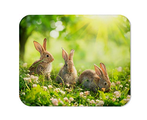 Yeuss Wild Rabbit Mouse Pad Rectangular Non-Slip Mousepad, Rabbits Beauty Art Design of Cute Little Easter Bunny in The Meadow Spring Flowers and Green Grass Sunbeams Gaming Mouse Pads,200mm x 240mm