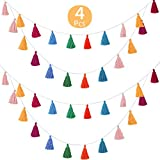 WILLBOND 4 Packs Cotton Tassel Garland Colorful Tassel Banner Decorative Wall Hanging for Home Decoration Wedding Birthday Baby Shower Party Supplies, Pre-Assembled (Tassel in 3.1 Inches)