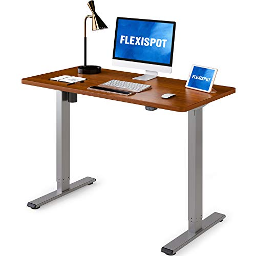 Flexispot Adjustable Desk, Electric Standing Desk 48 x 30 Inches Whole-Piece Desk Board Home Office Table Stand up Desk Classic (Gray Frame + 48 in Mahogany Top)