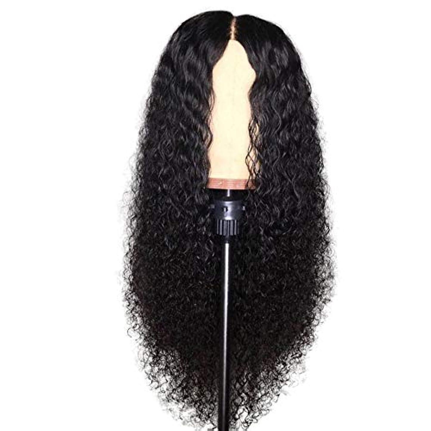退却素晴らしい甘やかすカーリー人間の髪の毛のかつらナチュラルカラー漂白ノットブラジル人のremyかつら人間の髪の毛の前髪かつら事前に吹かれたかつら,8
