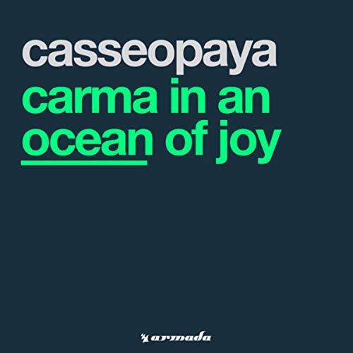 Carma In An Ocean Of Joy (Original)