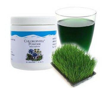 Chlorophyll Powder-3.23 oz. net weight