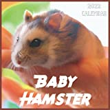 Baby Hamster Calendar 2022: 2021-2022 Baby Hamster Weekly & Monthly Planner | 2-Year Pocket Calendar | 19 Months | Organizer | Agenda | Appointment | For Baby Hamster Lovers