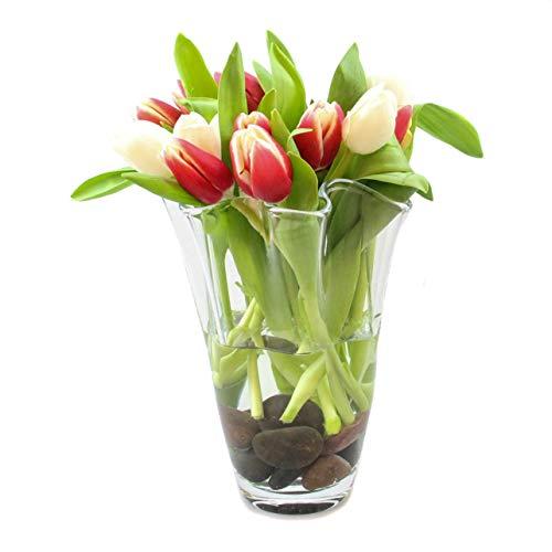Glaskönig Vase aus Glas | Höhe 25cm Ø ca.15cm | Blumenvase Waja als Tulpenvase in geschwungener Form | mundgeblasene Dekovase in modernem Design | Die Vase für den Frühling