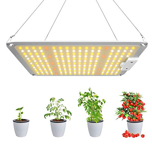 1000W LED Grow Light Dimmable LED Panel Grow Lights, High PPFD Sunlike Full Spectrum Plant Growing Lights for Hydroponic Indoor Seeding Veg and Flower Greenhouse