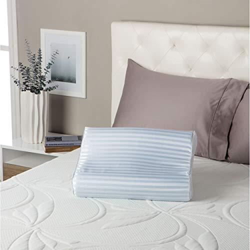 Simmons Beautyrest Comforpedic Loft from Beautyrest Contour Gel Memory Foam Pillow