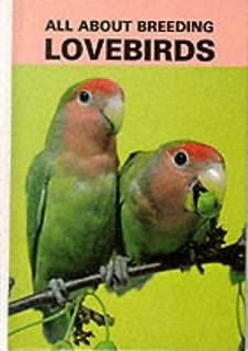 All About Breeding Lovebirds