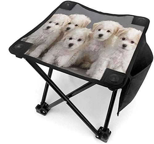 ZJDU Decor Hunting Chair Stool Animal Dog Muscial Dachshund Small Camping Folding Chairs Camp Fishing Portable Lightweight Collapsible Stools Seat Ottoman Little for Adults Women Men Kids