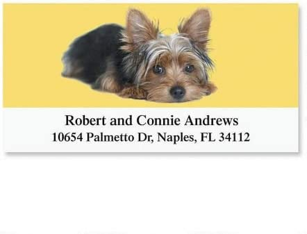 Yorkie SEAL limited product Personalized Return Address Labels- Sel Oakland Mall Large 144 of Set