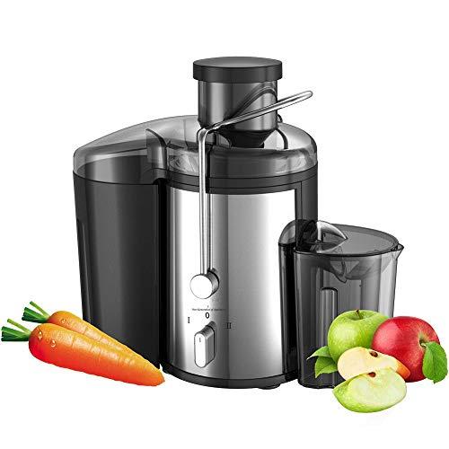 Ayanx roestvrijstalen sapcentrifuges Fruit- en groentemixer 2-speed elektrische sapcentrifuge Fruitdrinkmachine voor thuiskeuken