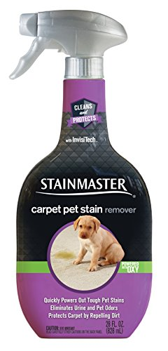 STAINMASTER Carpet Cleaner, Pet Stain Remover, 28 Ounce