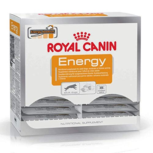 Royal Canin Hundesnack Energy 50g, 30er Pack (30 x 50 g)