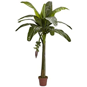 Nearly Natural 5338 Real Touch Banana Silk Tree, 6-Feet, Green