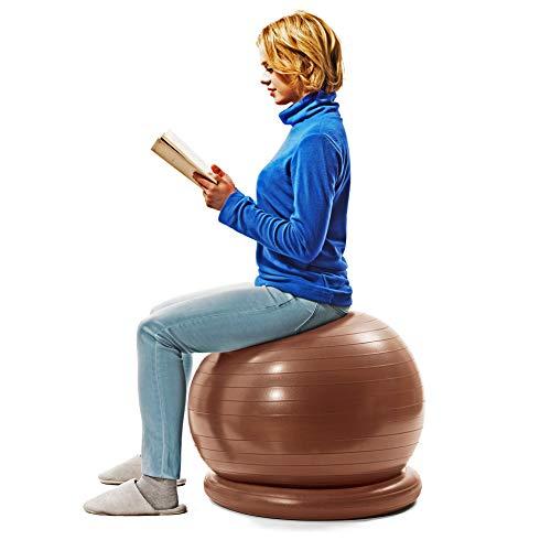 サクライ貿易 SAKURAI エルガム(erugam) バランスボール 腰にイイス 55cm 安定リング ポンプ付 #54145
