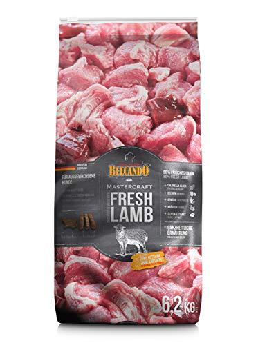 Belcando Mastercraft Fresh Lamb [6,2kg] Trockenfutter für Hunde | 80% Frischfleisch | Hundefutter getreidefrei | sortenrein | für alle Rassen