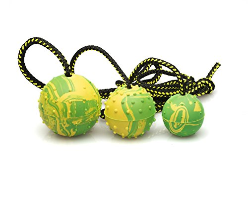 "Puppy Dog Ball, K9 Ball, Solid Rubber Ball on Rope for Reward, Fetch, Play 2"" (50mm)"