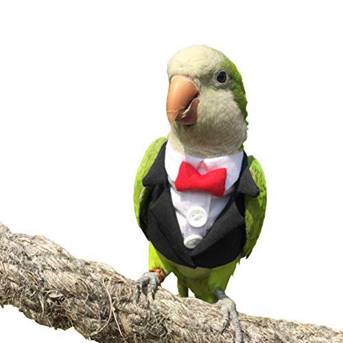 Pet Small Animals Clothes Birds Flight Suit for Parrots African Greys Parakeet Cockatiel Sun Conure, Cute School Uniform Tuxedo Business Suit for Christmas Party Birthday Pet Shows Cosplay Photo Prop
