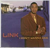 I Don't Wanna See by Link