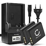 CELLONIC® 2x Batería de Repuesto NP-BG1 NP-FG1 per Sony DSC-H50 H3 H7 H9 H10 H20 H55 H70 H90 DSC-HX9V HX5V HX7V HX10V HX20V DSC-W55, 900mAh + Cargador BC-CSGB BC-CSGC, Accu Sustitución Camara, Battery