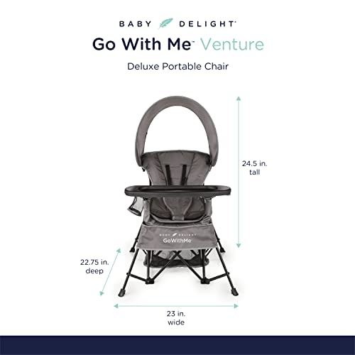 Baby Delight Go with Me Venture Chair Indoor/Outdoor Portable Chair with Sun Canopy Gray 3 Child Growth Stages: Sitting, Standing and Big Kid 3 Months to 75 lbs Weather Resistant