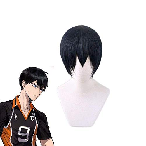 AICWDIVA Anime Haikyuu!! Cosplay Wigs Heat Resistant Synthetic Hair Cosplay Party Wig for Men (Kageyama Tobio)