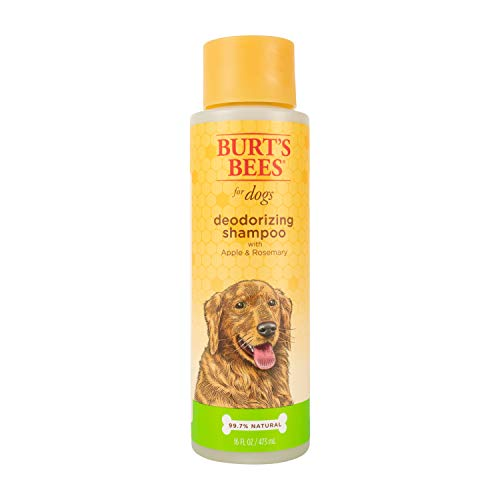 Burt's Bees dog shampoo for odor