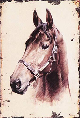 FS paard bruin portretkop metalen bord bordje gewelfd metaal sign 20 x 30 cm