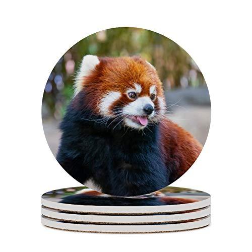 Lot de 4 dessous de verre ronds en liège pour thé Motif panda rouge au zoo