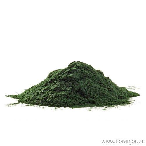 Floranjou - Spiruline poudre - 1 kg - Nom botanique : Spirulina maxima
