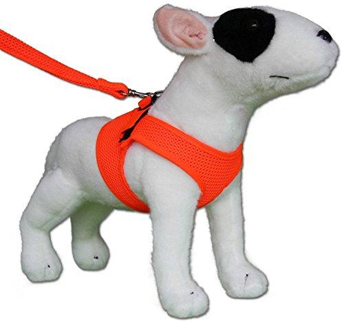 Softgeschirr Comfy Mesh Fluo orange leuchtet im Dunkeln Neon Hundegeschirr Geschirr Weste Fluoreszierend
