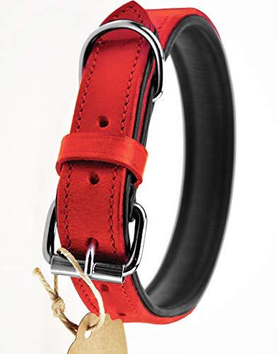 Schnüffelfreunde Lederhalsband Hund (XL - 46-55cm, Rot)