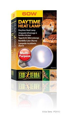 Exo Terra Daytime Heat Lamp Tageslicht-Wärmelampe A19, 60 W