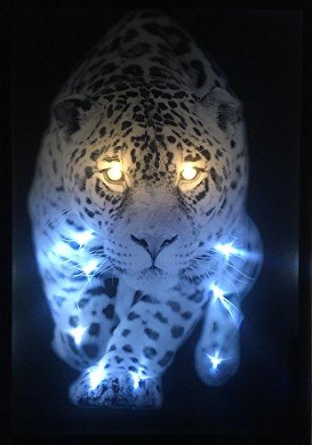 Samarkand-Lights LED-Bild mit Beleuchtung LED- Bilder Leinwandbild 65 x 45 cm Leuchtbild Tiger Leopard Tiere Wandbild