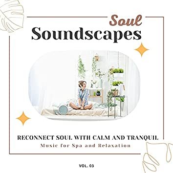Soul Soundscapes, V03 - Reconnect Soul With Calm And Tranquil Music For Spa And Relaxation