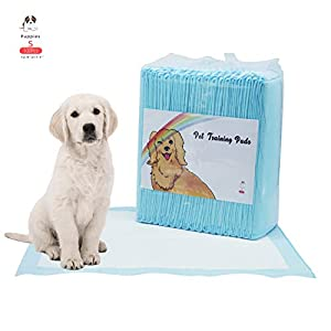 Disposable Puppy Pee Pads Pet Training Pad, Ultra Absorbent Dog Wee Wee Pads, Incontinence Bed Unscented Portable for Outdoor, Starter Kit for Small Medium Large Dogs Multiple sizes 5-Layer Protection