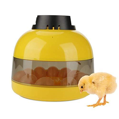 DXX-HR Mini LED Digital Incubadora, Uso del hogar Inteligente de Control de Temperatura manuales convertir Pollo codorniz Aves Hatcher (10 Huevo)