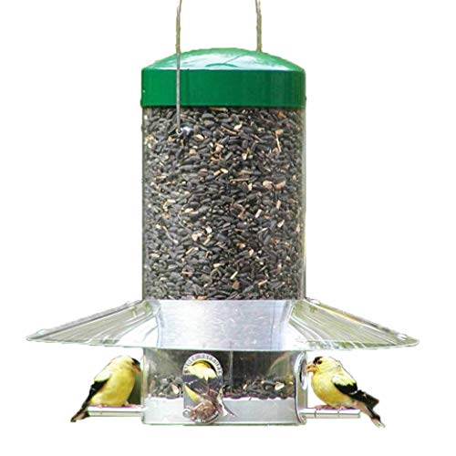 Birds Choice NP435 Bird Feeder, 12-Inch, Green