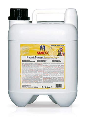 Sanibox SANI506 Limone, 5 L
