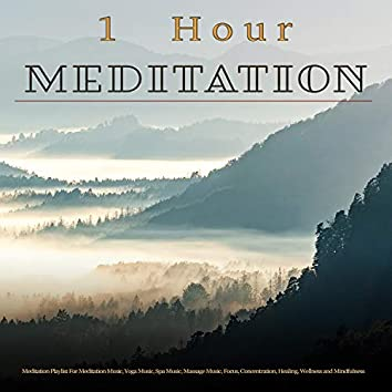 1 Hour Meditation: Nature Sounds, Forest Sounds and Bird Sounds Meditation Playlist For Meditation Music, Yoga Music, Spa Music, Massage Music, Focus, Concentration, Healing, Wellness and Mindfulness