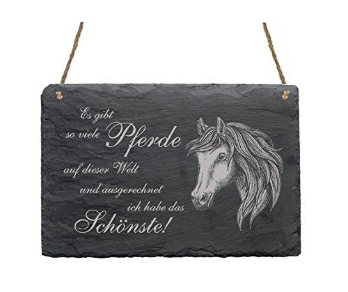Schiefertafel Schild Spruch Andalusier Schönstes Pferd der Welt 22 x 16 cm