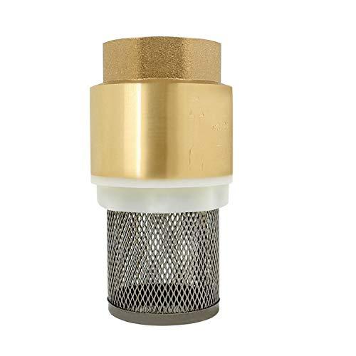 Clapet crepine anti retour 1/2 3/4 1 1-1/4 1-1/2 2 2-1/2 3 pouce - vanne non retour clapet anti-retour pompe (1/2 pouce)