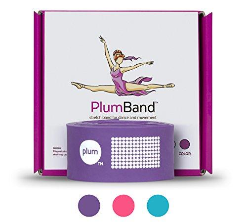 Das PlumBand - Ballett Stretch Band Für Tanz & Gymnastik - Fitnessband Für Training Und Steigerung Der Flexibilität - Erwachsene Und Kinder - Bonus Reisetasche - (Englische Version) - Purpur, Regular
