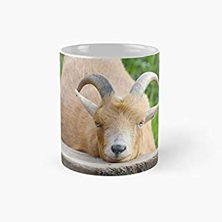Resting Goat II - Ceramic Coffee Cup,Tea 11oz Funny Gift
