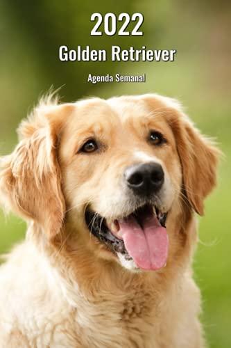 2022 Golden Retriever Agenda Semanal: 143 Páginas | Tamaño A5 | 14 Meses | 1 Semana en 2 Páginas | Planificador | Agenda Semana Vista | Canófilo | Perro | En Español