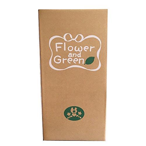 [87pot]フラワーギフト用 宅配ボックス 100サイズ 10枚セット(台紙付) サイズ250×250×500 花 梱包 箱 EB-2