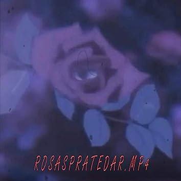 Rosaspratedar