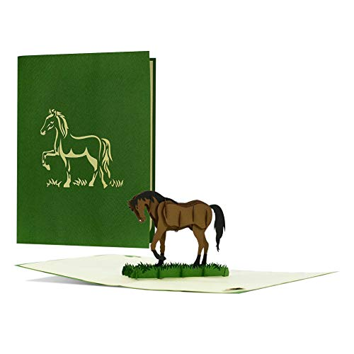 Edle Geburtstagskarte mit 3D Pop-up Pferd|Gutschein oder Geschenk für Reiter und Pferdeliebhaber|Geschenkgutschein ideal für Frauen und für Mädchen|F20
